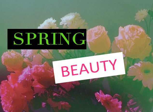 4 Spring beauty lance nous aimons